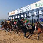 Carreras de Caballos, horse races, Pferderennen