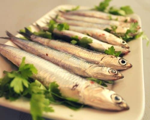 Tapas in Sanlúcar - boquerones - anchovies - Sardellen