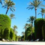 Parque Genovés Cádiz capital - Genovese Park
