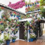 Festival de los patios en Córdoba, Innenhof in Andalusien