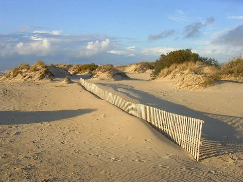 Dunas de Chipiona, dunes, Sanddünen