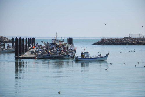 pescadores de Chipiona, fishermen, Fischer