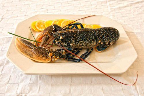 languste im Fischrestaurant in Chipiona