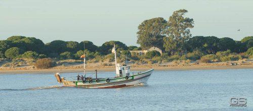 Doñana National Park España